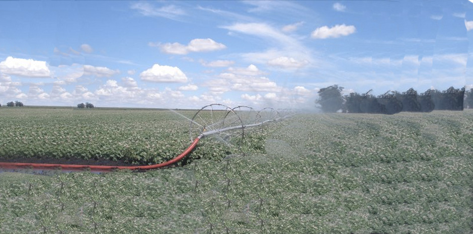 Irriline 187 Side Roll Irrigation